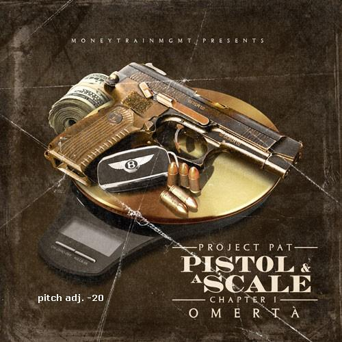 PP pistol scale -cover -20